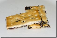 Garibaldi_biscuit